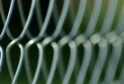 Bald Nob Wire fencing 11